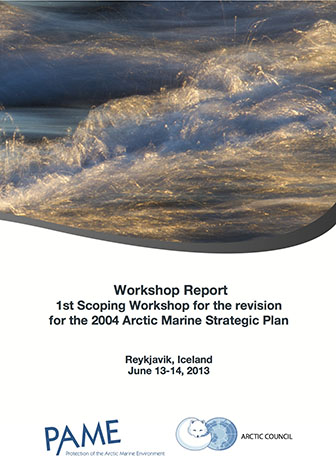 Final AMSP Workshop report 6th of Sep 2013