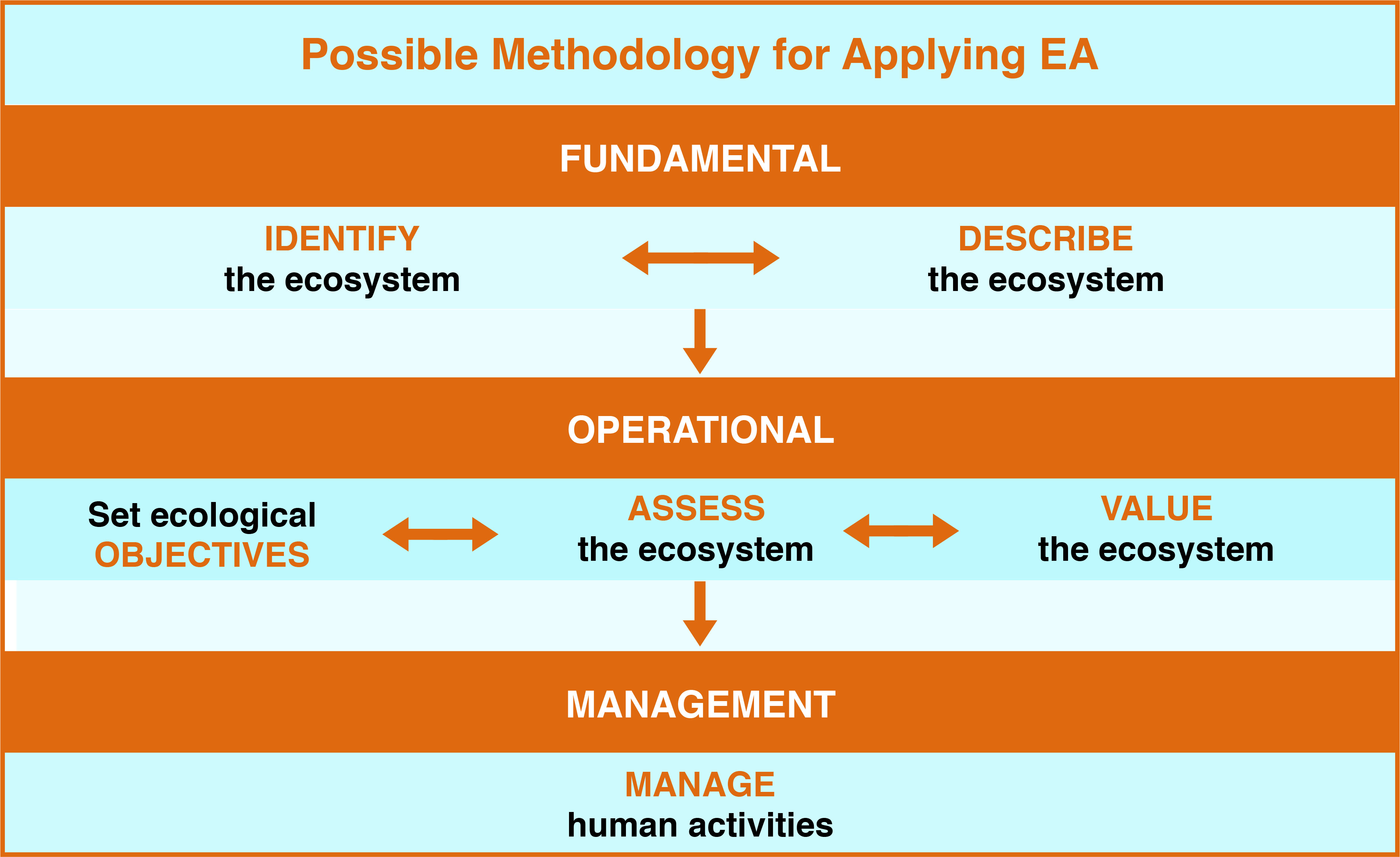 EA diagram
