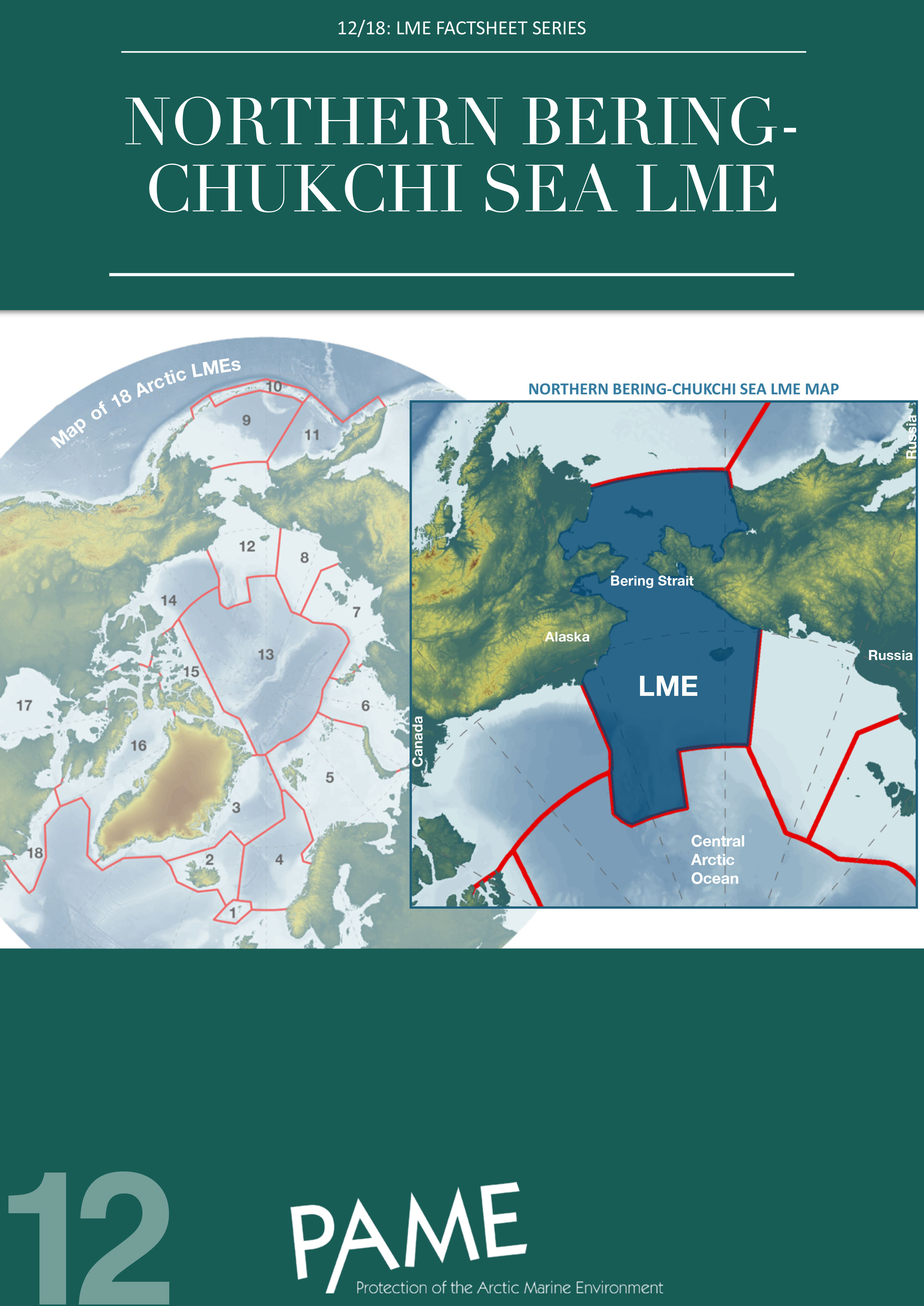 12 Northern Bering Chukchi Sea LME
