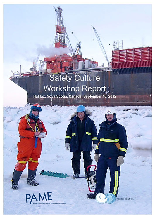 Safety Culture Workshop Final Report v