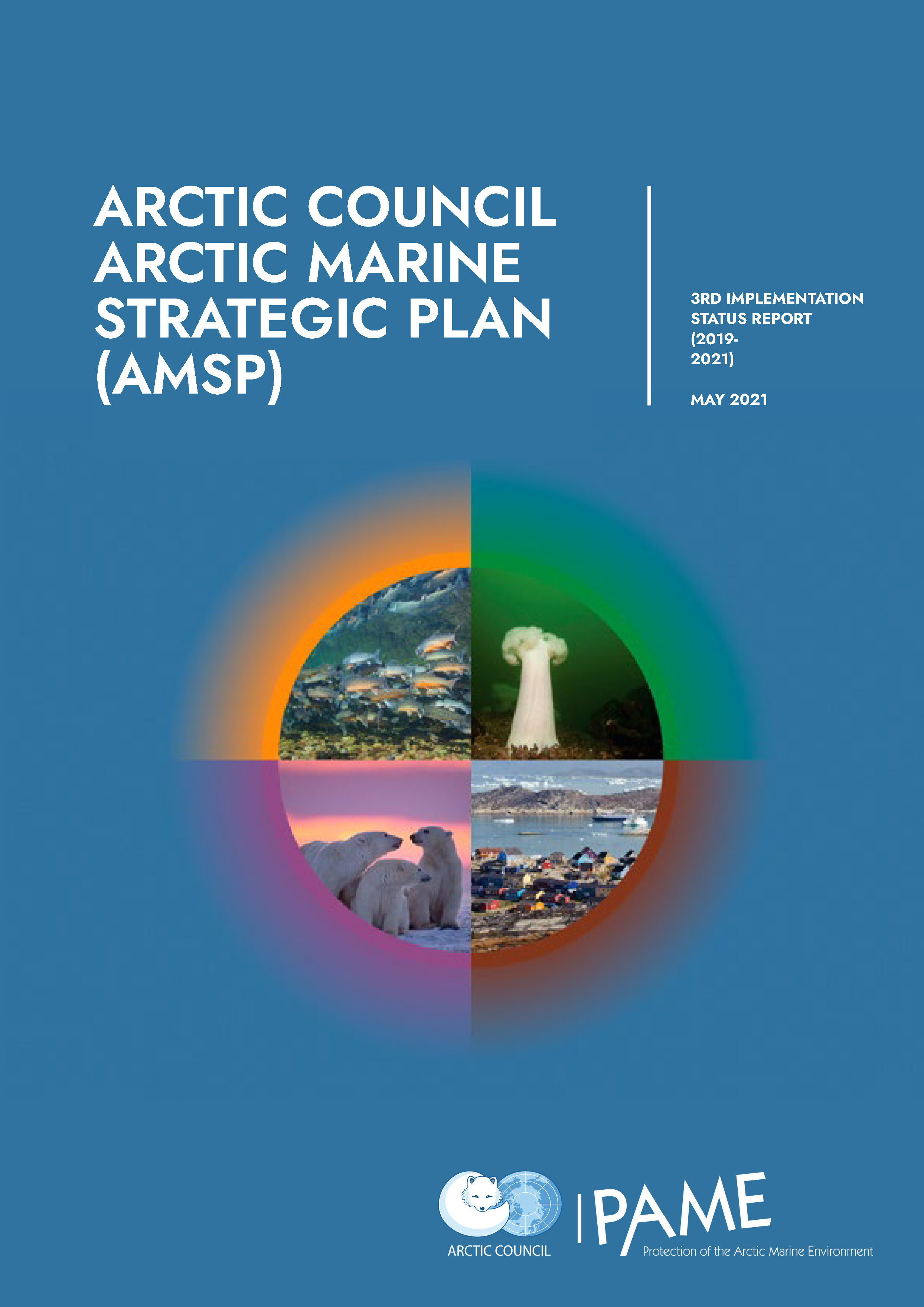 3rd AMSP Implementation Report 2019-2021