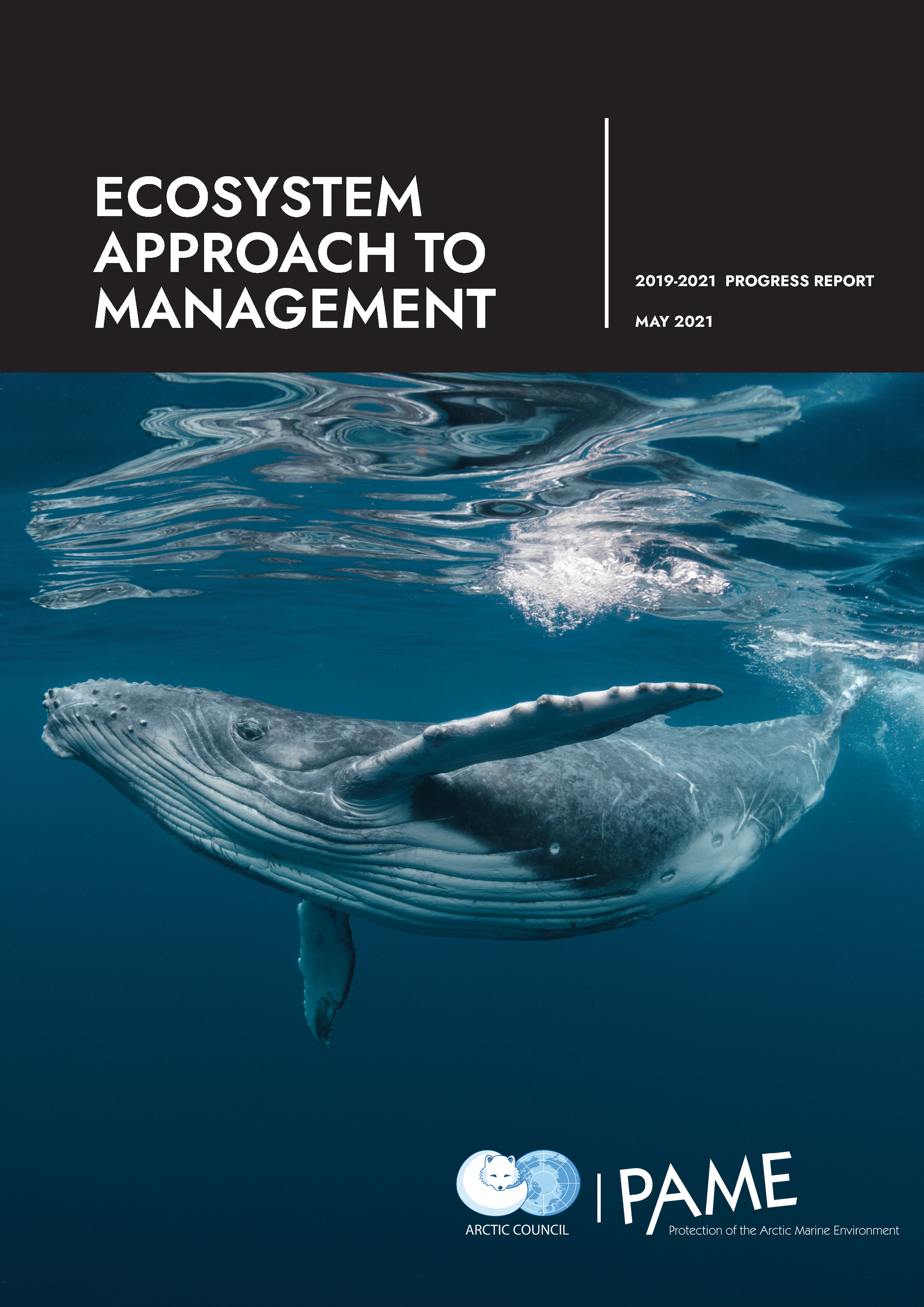 Ecosystem Approach to Management: 2019-2021 Progress Report