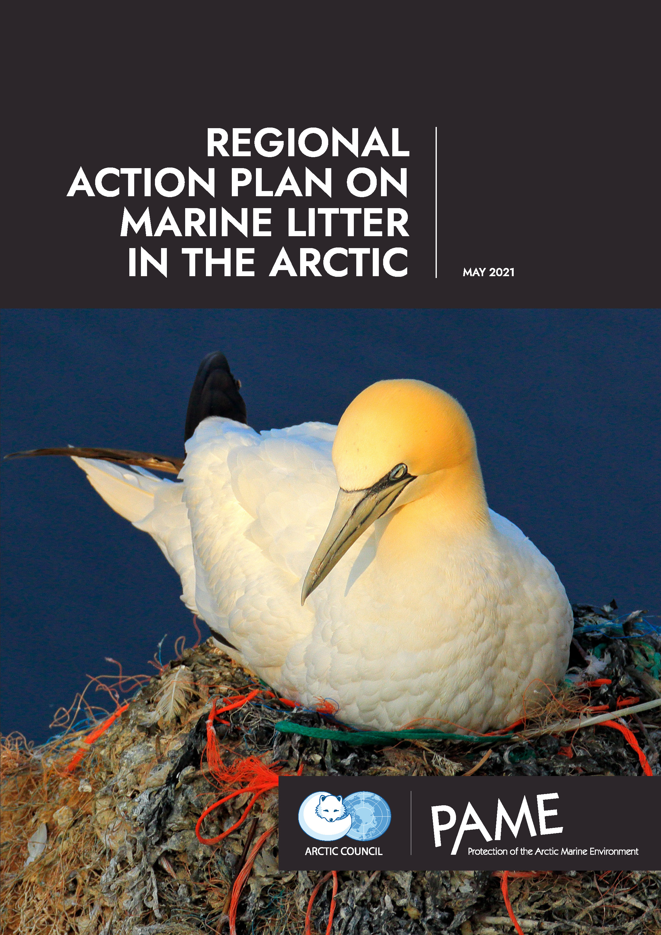 Regional Action Plan on Marine Litter in the Arctic
