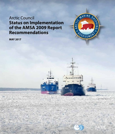4th AMSA Implementation Progress Report for the period 2015-2017 (For information)