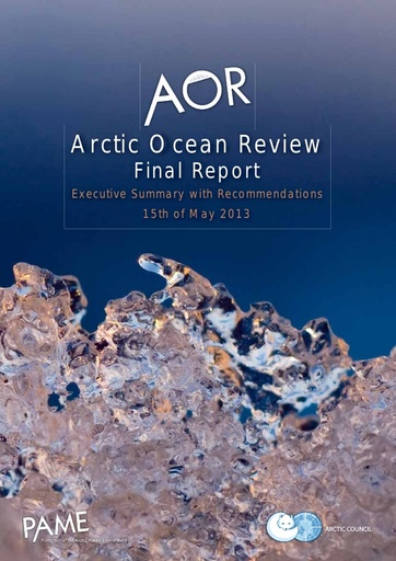 AOR Executive Summary with Recommendations