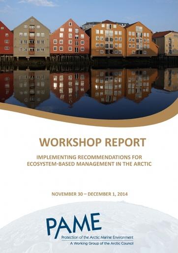 Implementing EA - Workshop Report