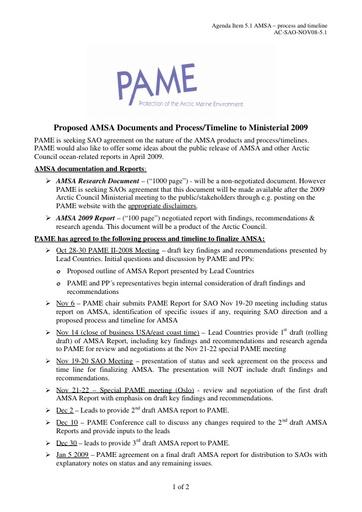 AMSA Progress report to 2009 SAO