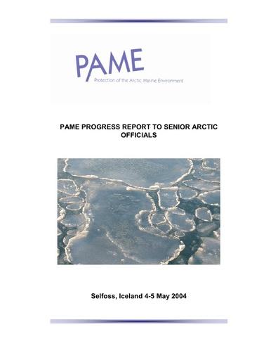SAO Report 2004